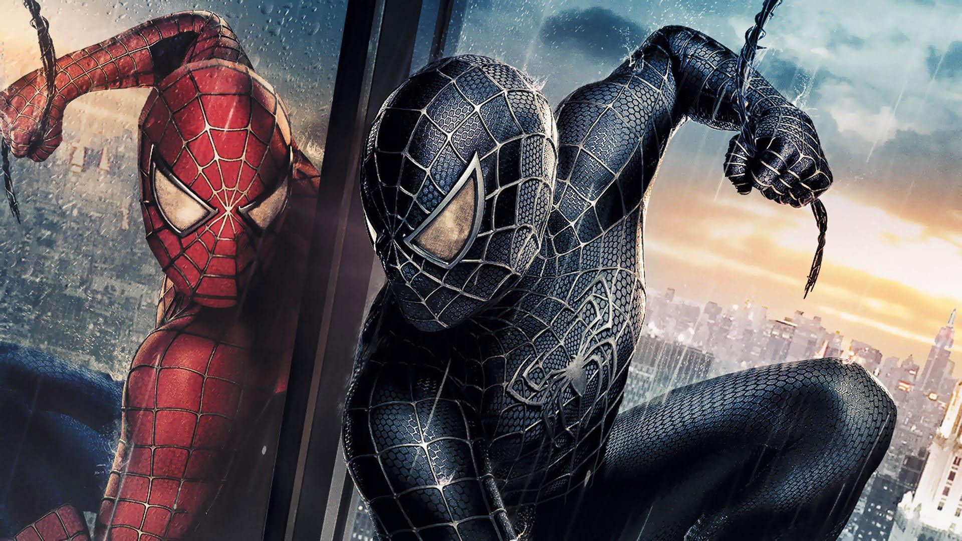Animals For Black Spiderman Wallpaper Widescreen Hd