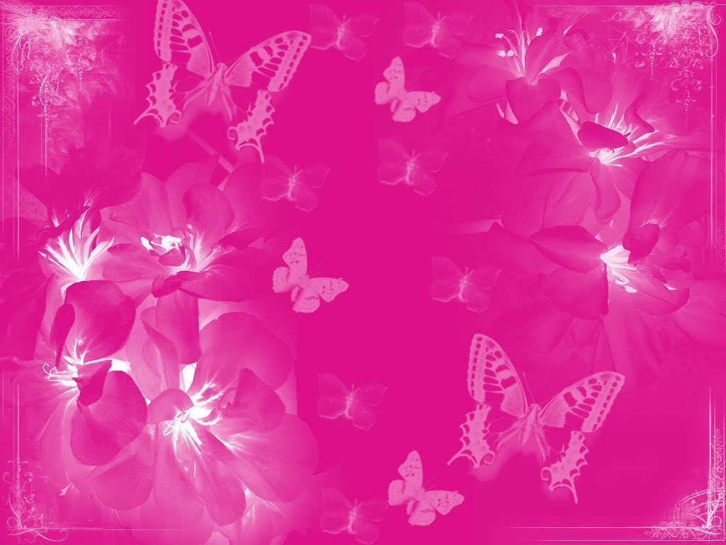 Love Wallpaper In Pink colour : Pink color Pink Wallpapers - Wallpaper cave