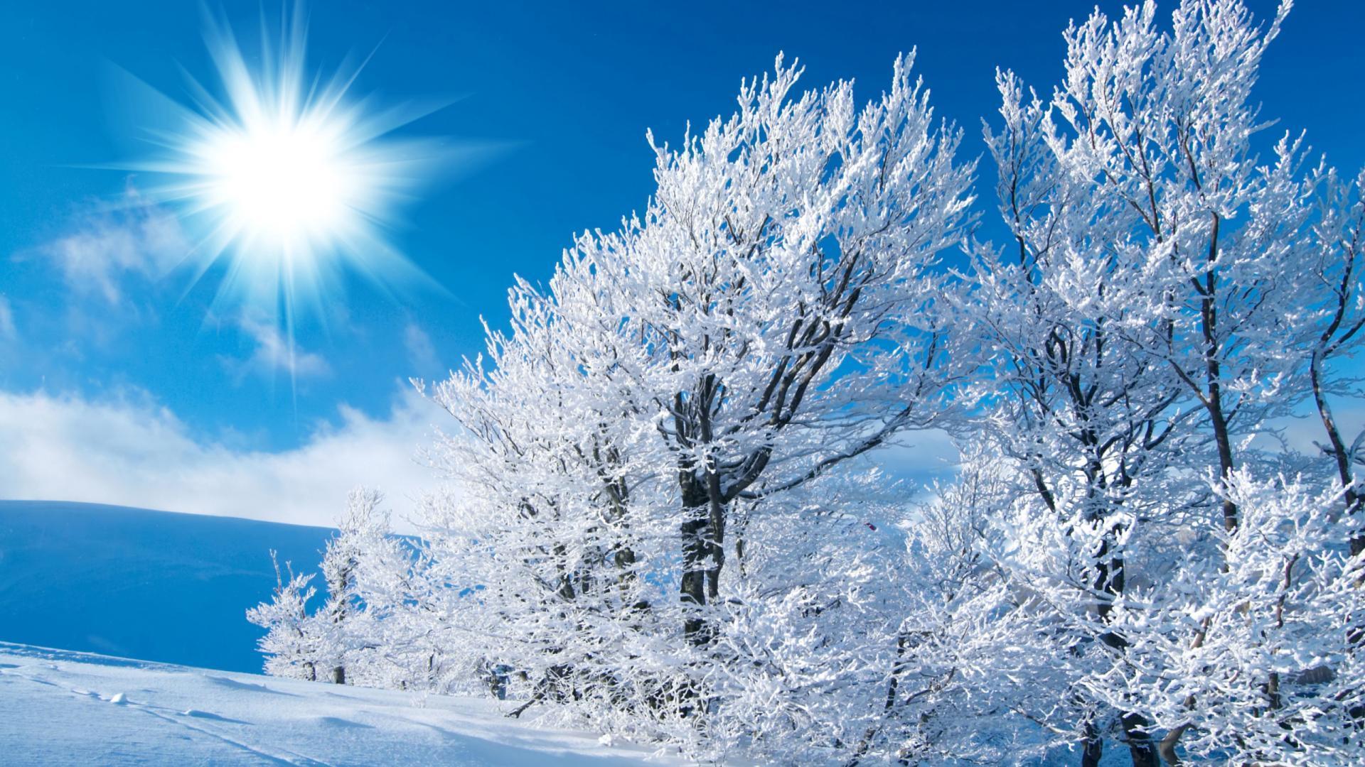 Обои зима рисунок