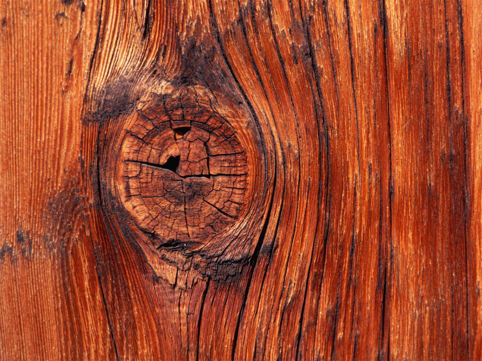 Wood Wallpapers 182 HD Wallpapers