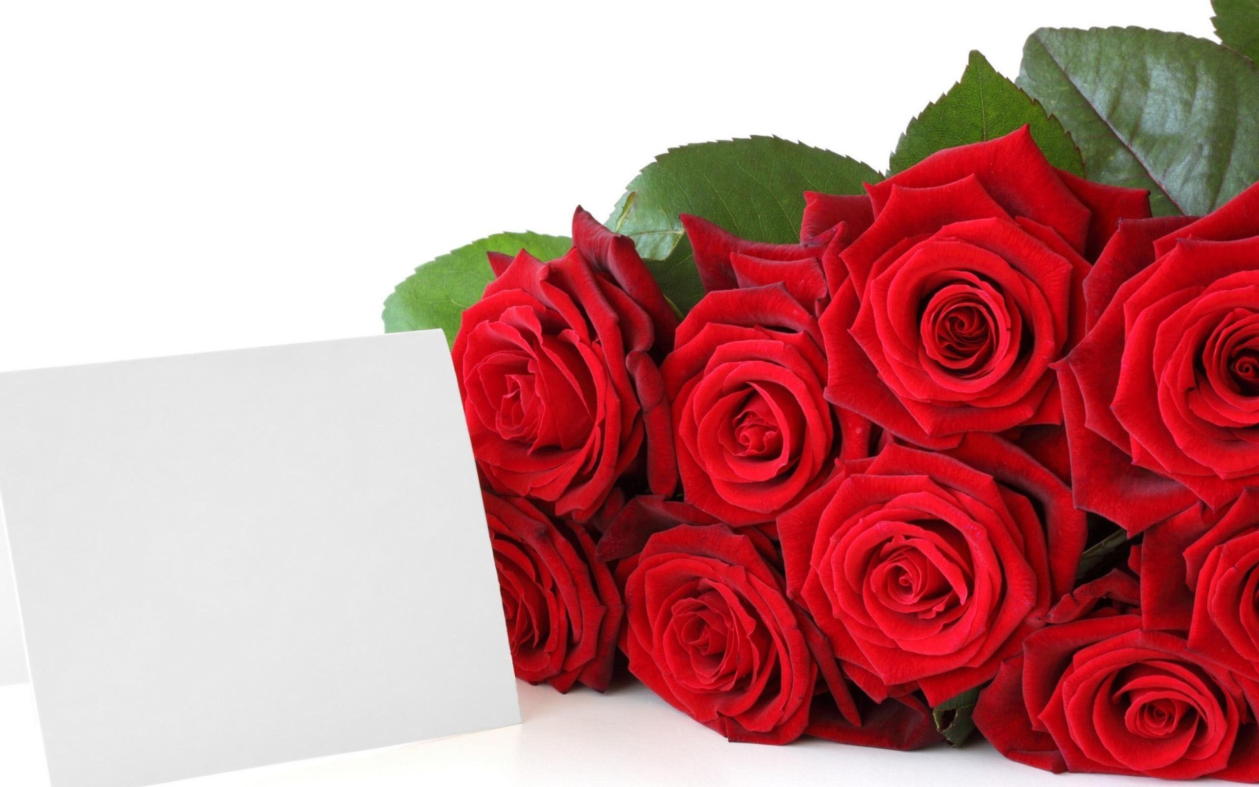 Картинки розы красные с пожеланиями