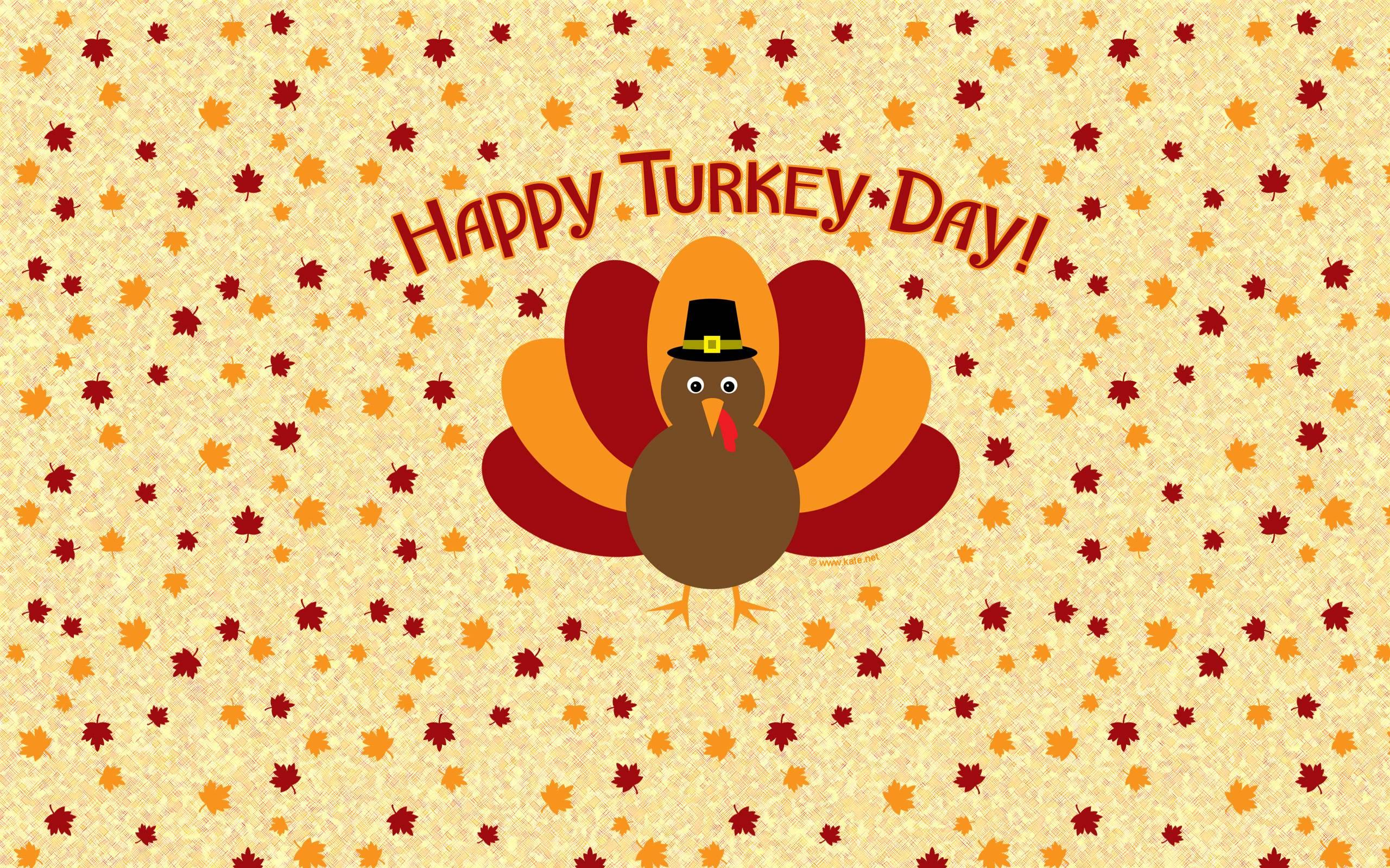 Free Turkey Wallpaper