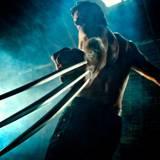 Wolverine Wallpaper HD