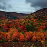 Autumnal Cloudy Wallpapers