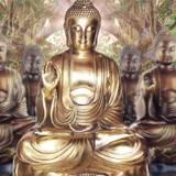Gautama Buddha Wallpapers