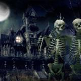 Halloween Skeletons Wallpapers