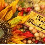 Cute Thanksgiving 2017 Wallpapers