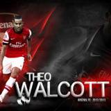 Theo Walcott Wallpapers