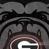 Georgia Bulldogs Softball Wallpapers
