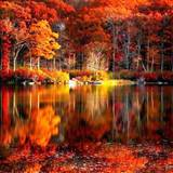 Fall Colors Reflection Wallpapers