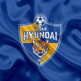 Ulsan Hyundai FC Wallpapers