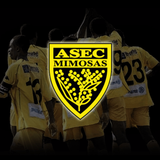 ASEC Mimosas Wallpapers