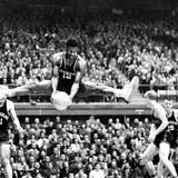 Oscar Robertson Wallpapers