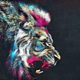 Lion Color Wallpapers