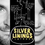 Silver Linings Playbook Wallpapers
