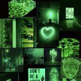Green VSCO Wallpapers