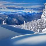 Winterscape Wallpapers