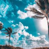 Aesthetic Summer Wallpapers