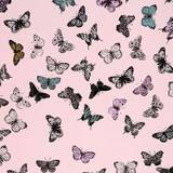 Butterfly IPhone Wallpapers