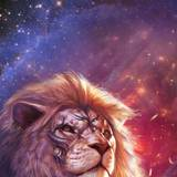 Lion Tattoo Wallpapers