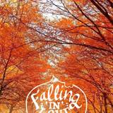 Autumn Quotes Wallpapers