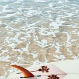 Surfboard Aesthetic Wallpapers