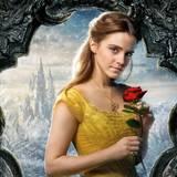 Bella Rose Wallpapers