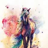 Watercolour Animal Wallpapers