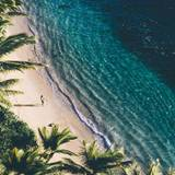 Ocean Coast Palm Trees Nature Wallpapers