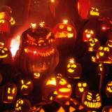 Halloween Party Vertical Wallpapers