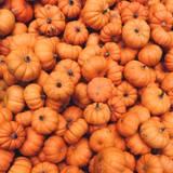 Pumpkin Aesthetic Wallpapers