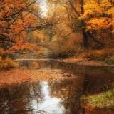 Free Autumn Desktop Wallpaper